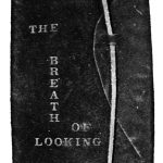 The Breath of Looking