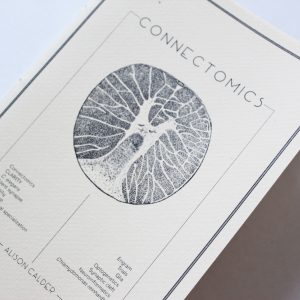Connectomics2