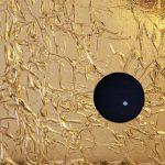 Pioneer 10, I Hear You